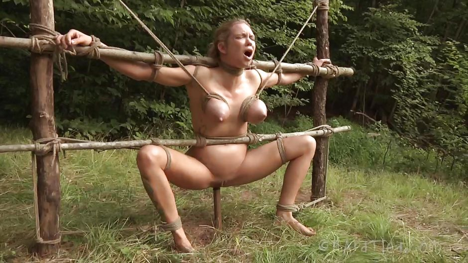 female domination and cuckoldry